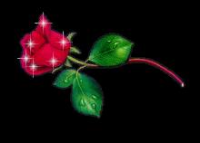 fiori_glitter_27